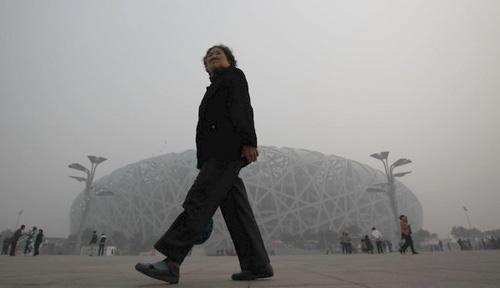 Pollution - Nid d'Oiseau Pékin