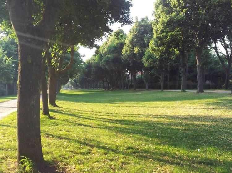 La Pelouse est l'un des sites emblématiques de Montgeron, ville de plus de 23 000 habitants (Crédits - Sébastien Barké)
