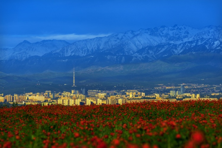 Vue d'Almaty et de ses montagnes enneigées (Crédits - Almaty 2022)