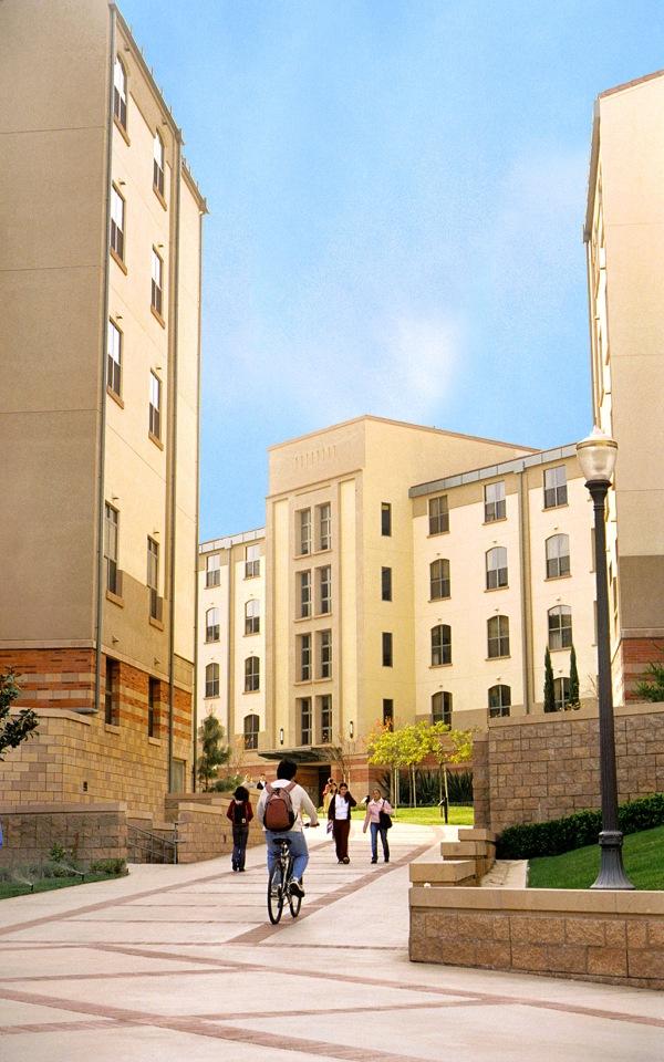 Vue du campus de l'Université de Californie à Los Angeles (Crédits - LA 2024)