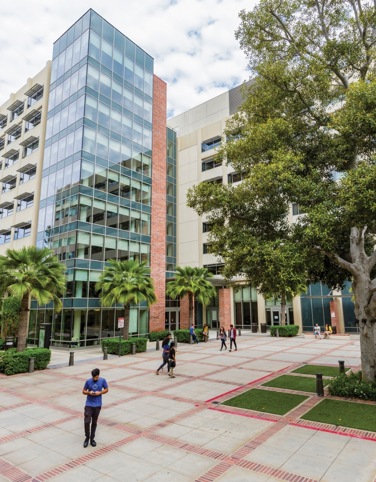 Vue du campus universitaire de l'UCLA (Crédits - LA 2024)