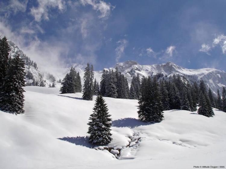 (Crédits - Suisse Tourisme)